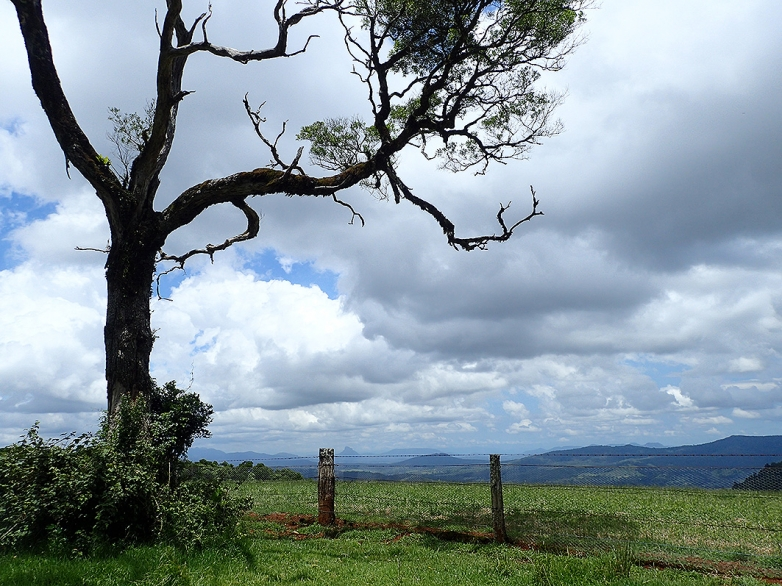 Magnificent vistas feature along the Darling Downs-Moreton Rabbit Board Fence