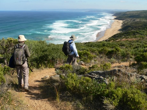 Best of the Great Ocean Walk